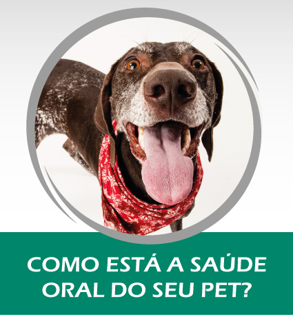 post_facebook1_higiene_oral_fauna