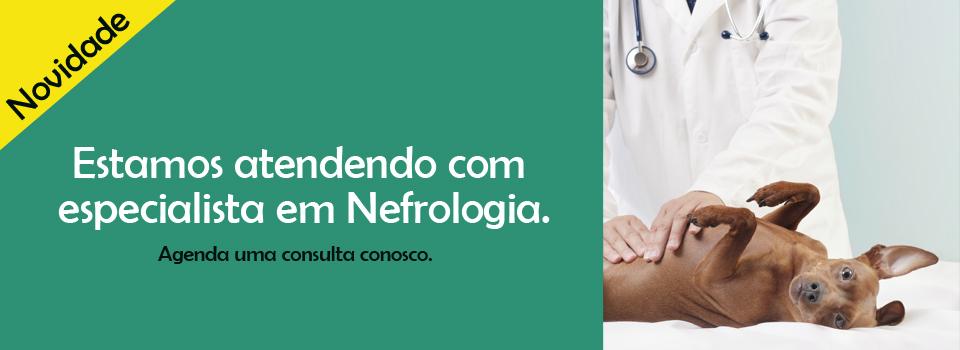 Banner_Nefrologia